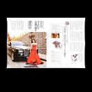 Pavone Magazine (2009)